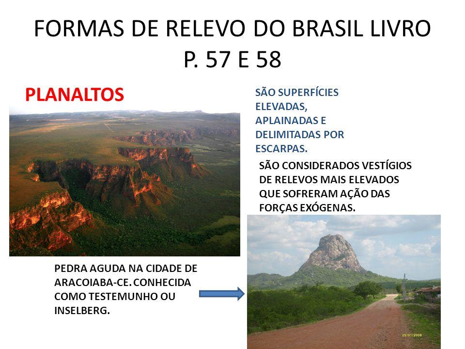 FORMAS DE RELEVO DO BRASIL LIVRO P.