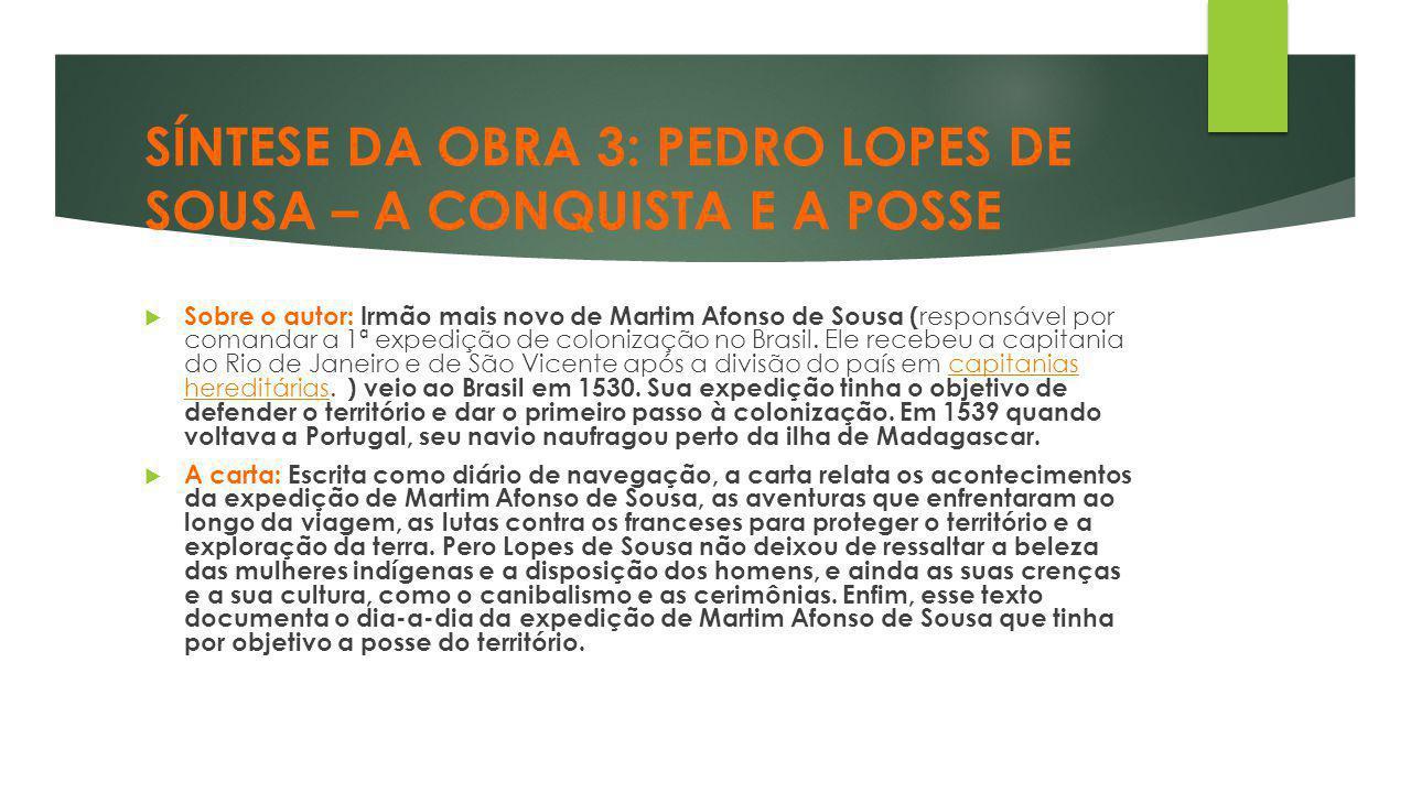 SÍNTESE DA OBRA 3: PEDRO LOPES DE SOUSA – A CONQUISTA E A POSSE  Sobre o autor: Irmão mais novo de Martim Afonso de Sousa ( responsável por comandar