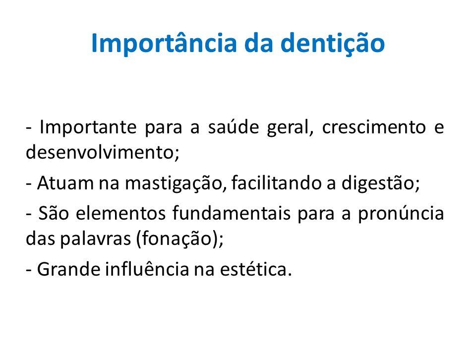 Importância da dentição - Importante para a saúde geral, crescimento e desenvolvimento; - Atuam na mastigação, facilitando a digestão; - São elementos