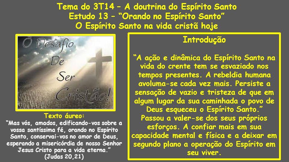 Introdução A ação e dinâmica do Espírito Santo na vida do crente tem se esvaziado nos tempos presentes.