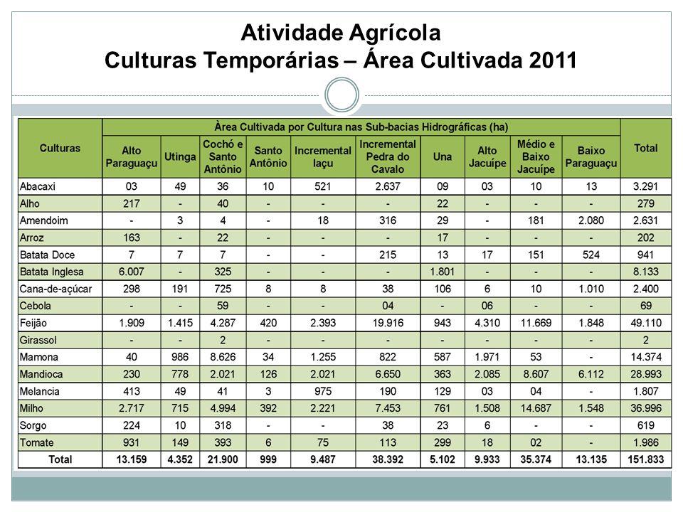 Atividade Agrícola Culturas Temporárias – Área Cultivada 2011