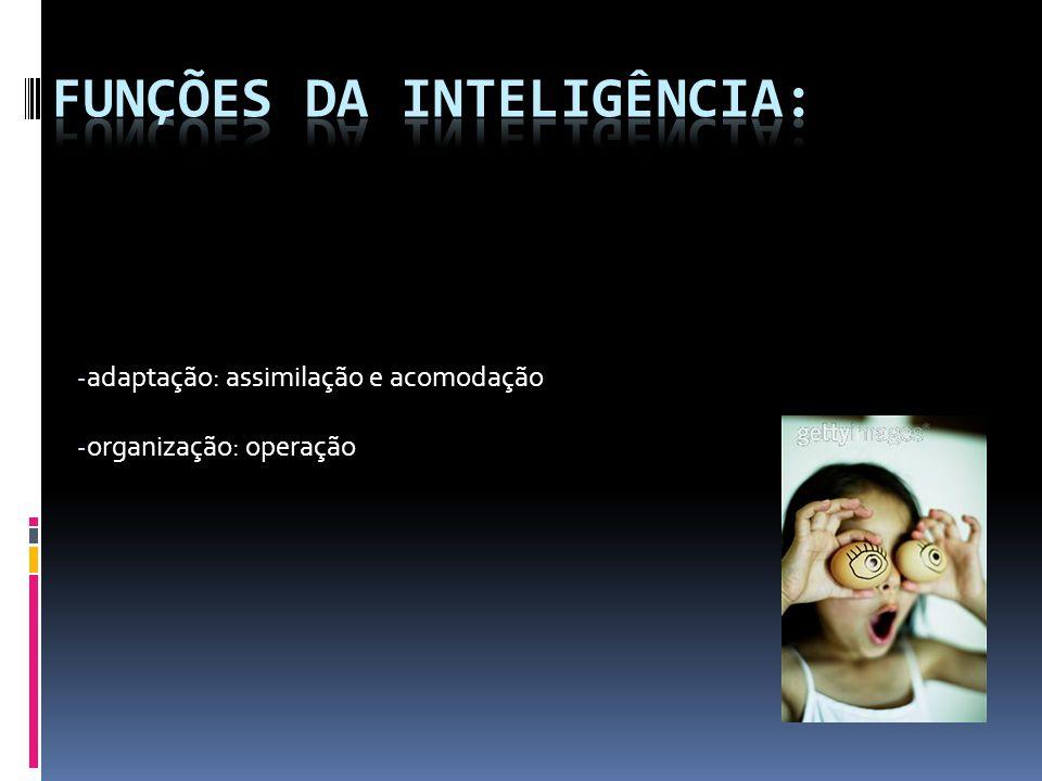 - adaptação: assimilação e acomodação - organização: operação
