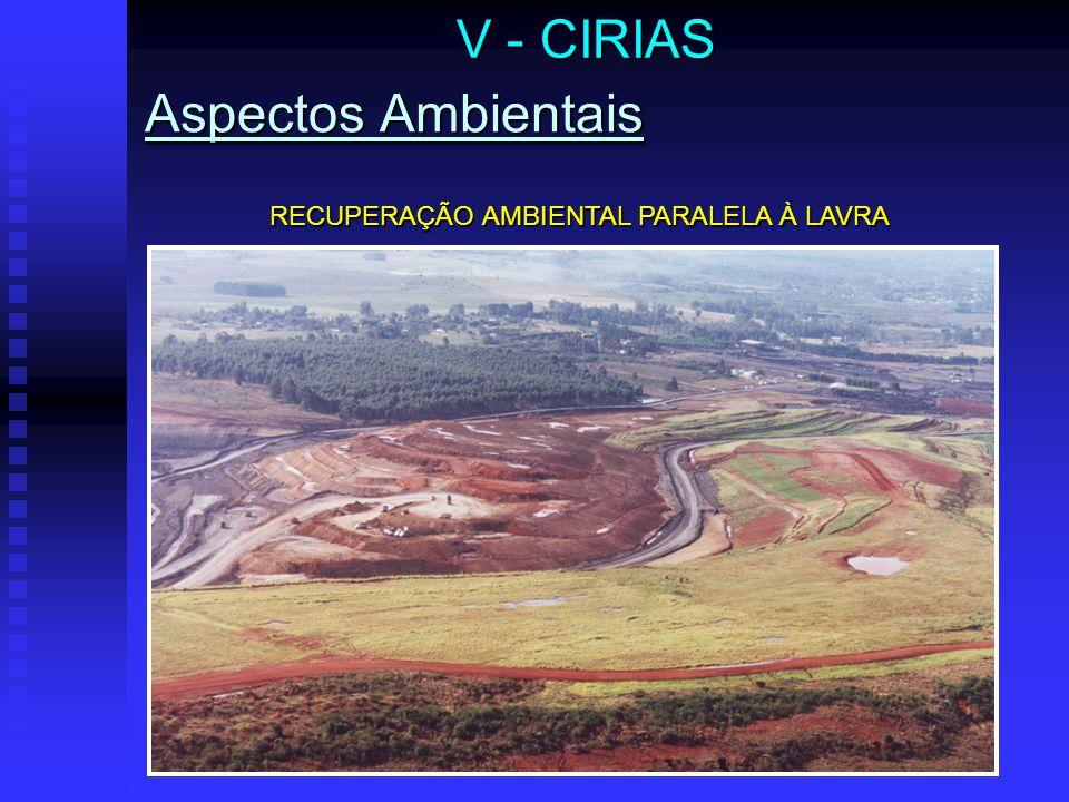 V - CIRIAS Aspectos Ambientais RECUPERAÇÃO AMBIENTAL PARALELA À LAVRA
