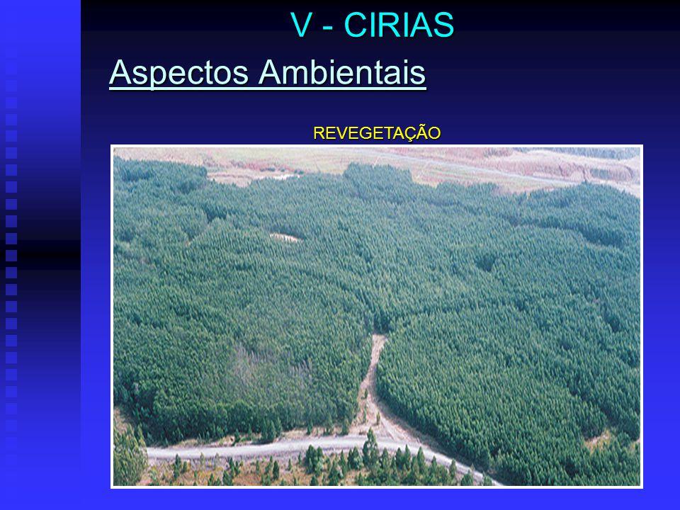 V - CIRIAS Aspectos Ambientais RETORNO DA FAUNA ÀS ÁREAS RECUPERADAS