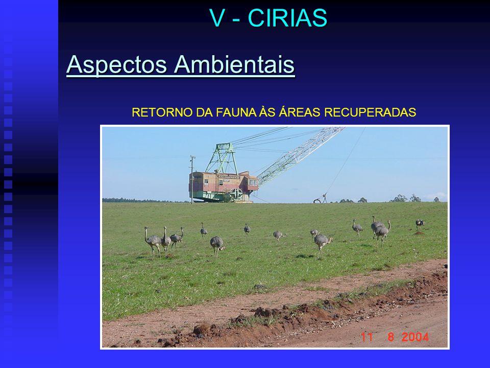 V - CIRIAS Aspectos Ambientais