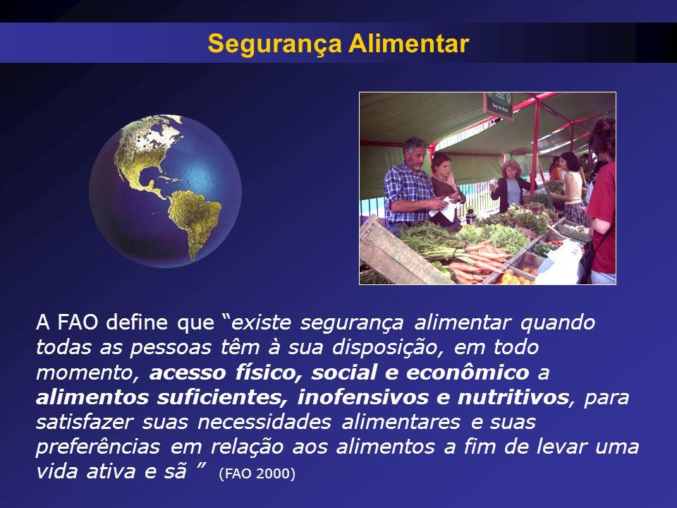 """A FAO define que """"existe segurança alimentar quando todas as pessoas têm à sua disposição, em todo momento, acesso físico, social e econômico a alimen"""
