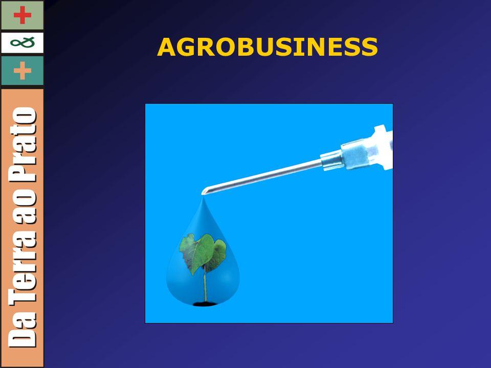 Na última década, 10 empresas passaram a controlar 49 % do comércio mundial de sementes.
