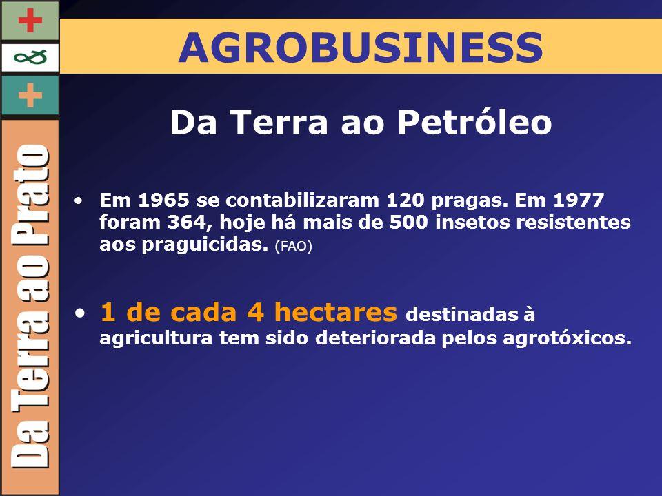 AGROBUSINESS Em 1965 se contabilizaram 120 pragas. Em 1977 foram 364, hoje há mais de 500 insetos resistentes aos praguicidas. (FAO) Da Terra ao Petró