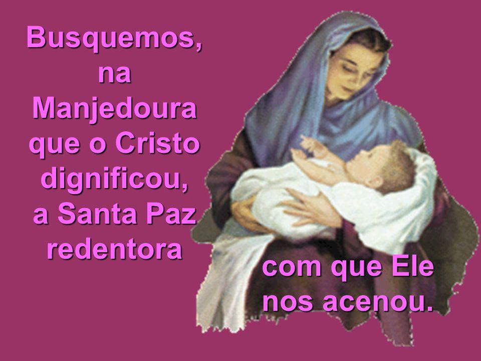 Busquemos, na Manjedoura que o Cristo dignificou, a Santa Paz redentora com que Ele nos acenou.