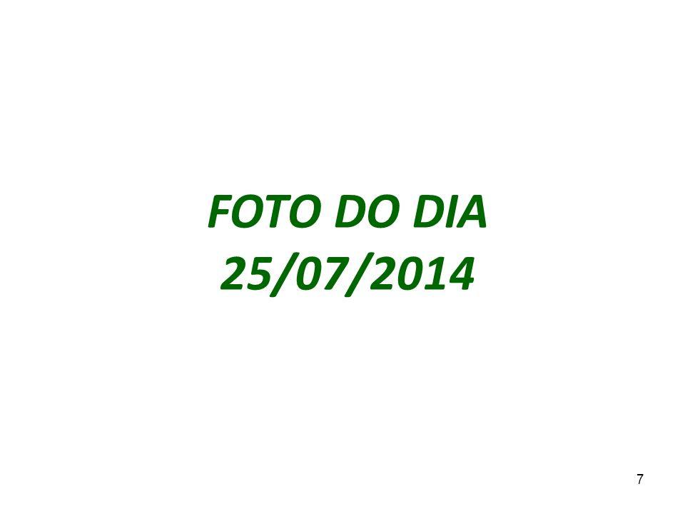 7 FOTO DO DIA 25/07/2014