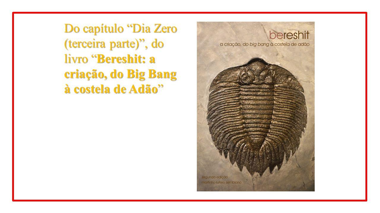 """Do capítulo """"Dia Zero (terceira parte)"""", do livro """"Bereshit: a criação, do Big Bang à costela de Adão"""""""