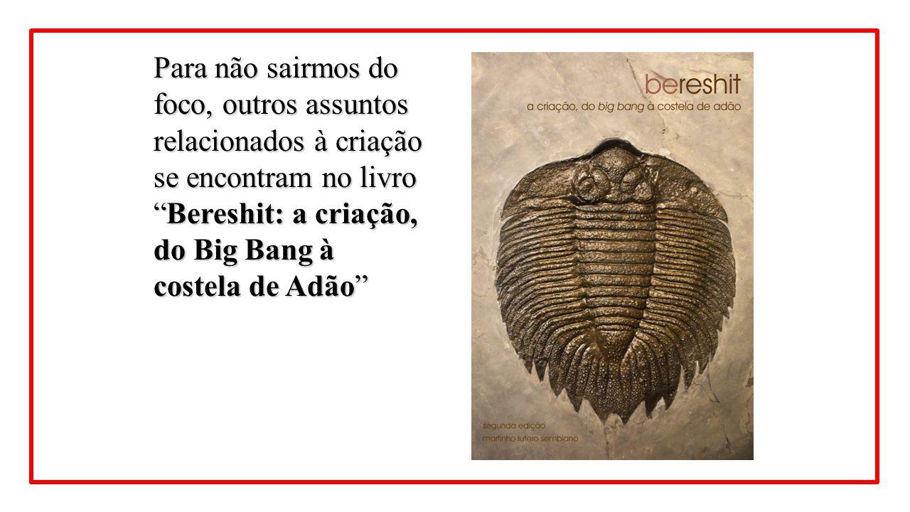 """Para não sairmos do foco, outros assuntos relacionados à criação se encontram no livro """"Bereshit: a criação, do Big Bang à costela de Adão"""""""