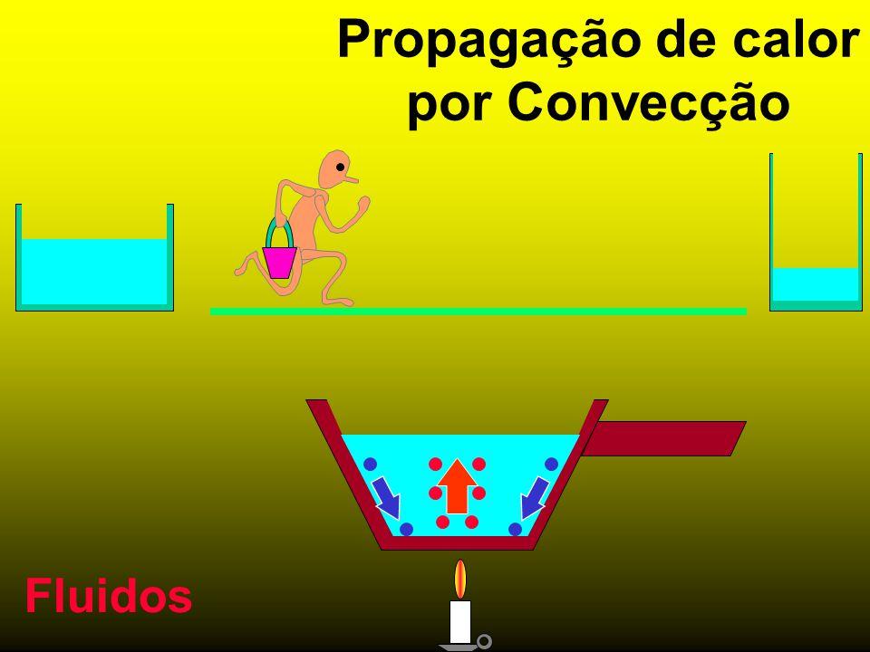 Propagação de calor por Convecção Fluidos