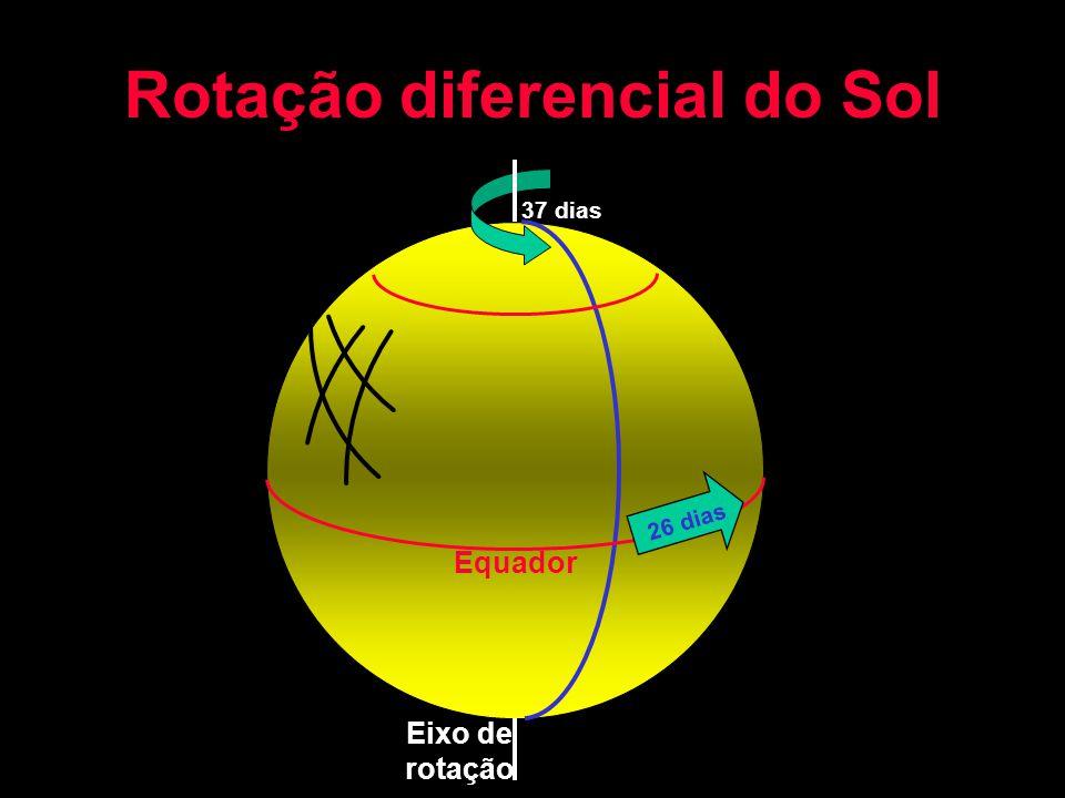 Rotação diferencial do Sol Eixo de rotação Equador 26 dias 37 dias