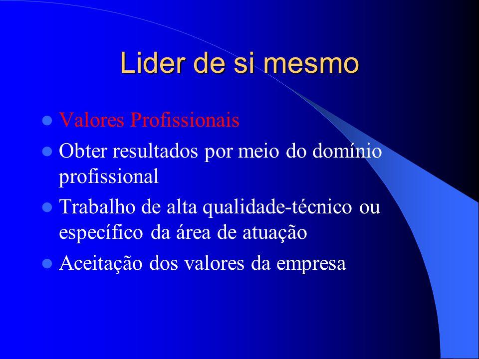 Lider de si mesmo Valores Profissionais Obter resultados por meio do domínio profissional Trabalho de alta qualidade-técnico ou específico da área de