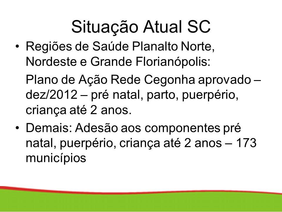 Situação Atual SC Regiões de Saúde Planalto Norte, Nordeste e Grande Florianópolis: Plano de Ação Rede Cegonha aprovado – dez/2012 – pré natal, parto,
