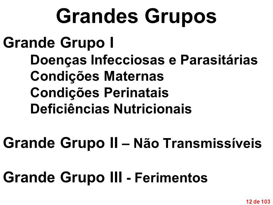 12 de 103 Grandes Grupos Grande Grupo I Doenças Infecciosas e Parasitárias Condições Maternas Condições Perinatais Deficiências Nutricionais Grande Grupo II – Não Transmissíveis Grande Grupo III - Ferimentos