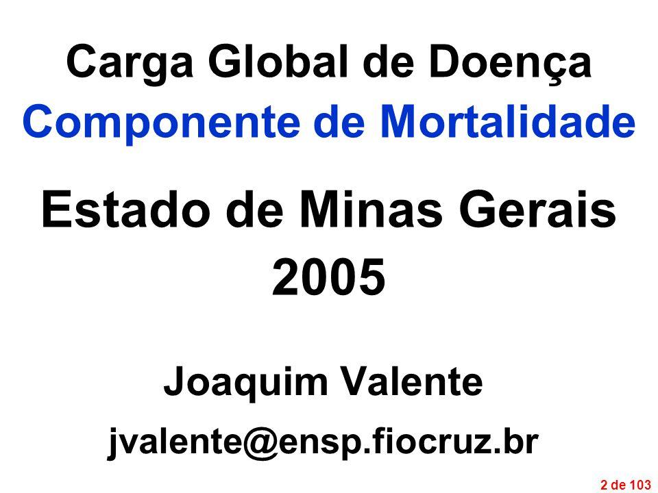 2 de 103 Carga Global de Doença Componente de Mortalidade Estado de Minas Gerais 2005 Joaquim Valente jvalente@ensp.fiocruz.br