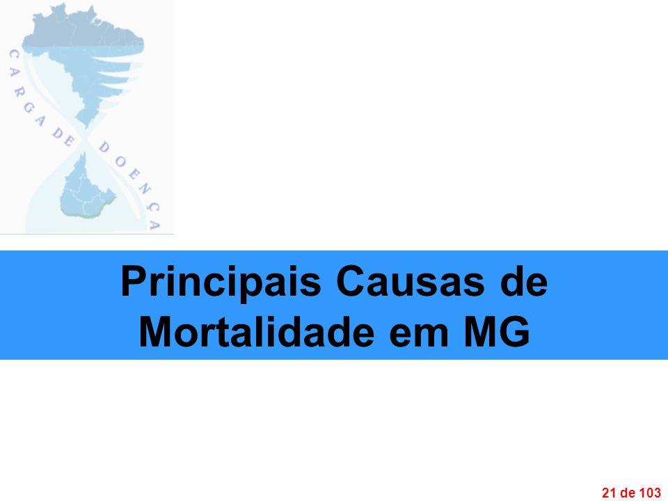 21 de 103 Principais Causas de Mortalidade em MG