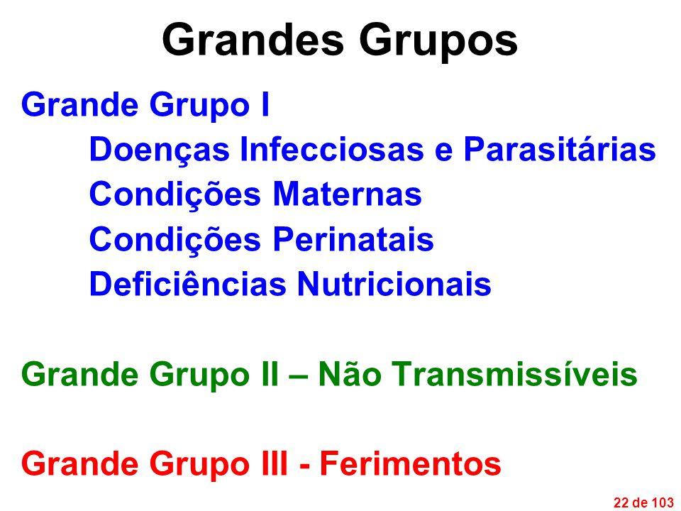 22 de 103 Grandes Grupos Grande Grupo I Doenças Infecciosas e Parasitárias Condições Maternas Condições Perinatais Deficiências Nutricionais Grande Grupo II – Não Transmissíveis Grande Grupo III - Ferimentos