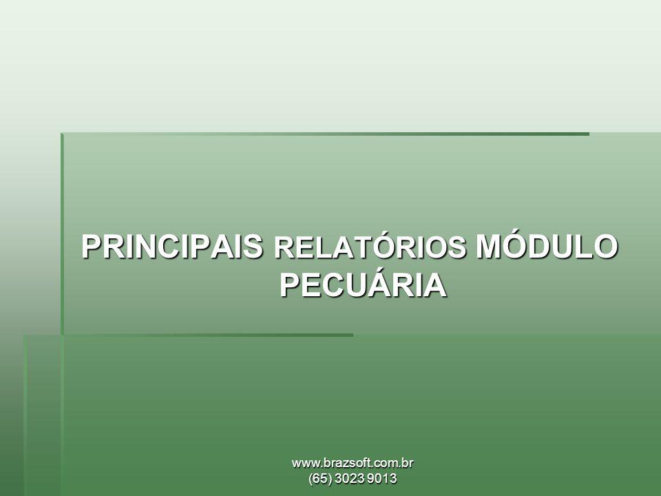 www.brazsoft.com.br (65) 3023 9013 PRINCIPAIS RELATÓRIOS MÓDULO PECUÁRIA