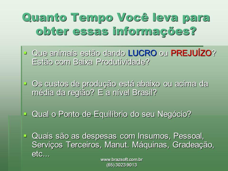 www.brazsoft.com.br (65) 3023 9013 Quanto Tempo Você leva para obter essas informações?  Que animais estão dando LUCRO ou PREJUÍZO? Estão com Baixa P