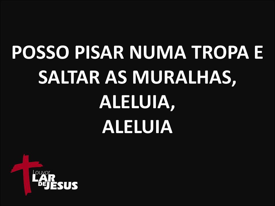 POSSO PISAR NUMA TROPA E SALTAR AS MURALHAS, ALELUIA, ALELUIA
