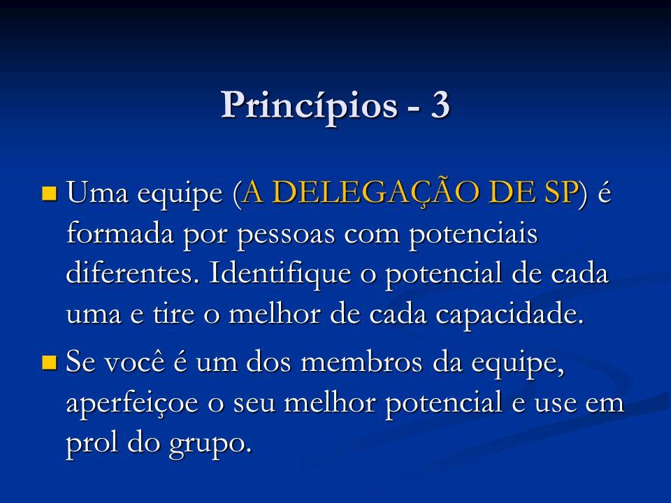 Princípios - 3 Uma equipe (A DELEGAÇÃO DE SP) é formada por pessoas com potenciais diferentes. Identifique o potencial de cada uma e tire o melhor de