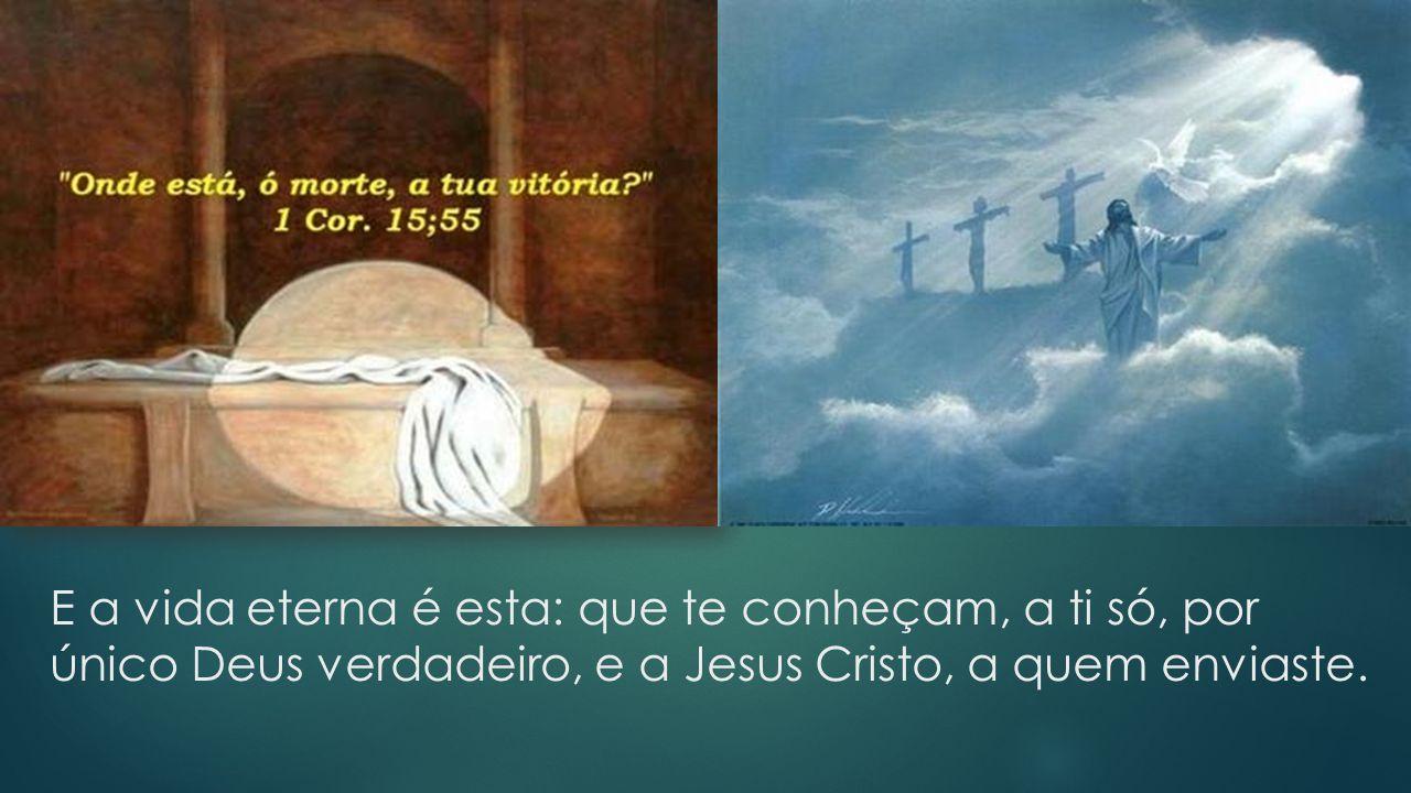 E a vida eterna é esta: que te conheçam, a ti só, por único Deus verdadeiro, e a Jesus Cristo, a quem enviaste.