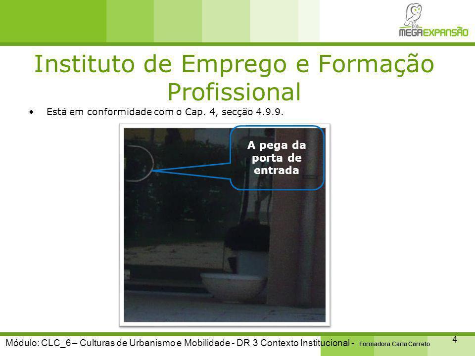 Instituto de Emprego e Formação Profissional 5 Módulo: CLC_6 – Culturas de Urbanismo e Mobilidade - DR 3 Contexto Institucional - Formadora Carla Carreto Segundo o Cap.