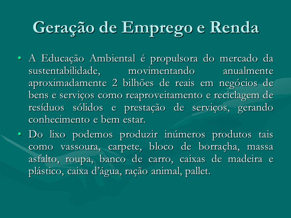 Geração de Emprego e Renda A Educação Ambiental é propulsora do mercado da sustentabilidade, movimentando anualmente aproximadamente 2 bilhões de reai