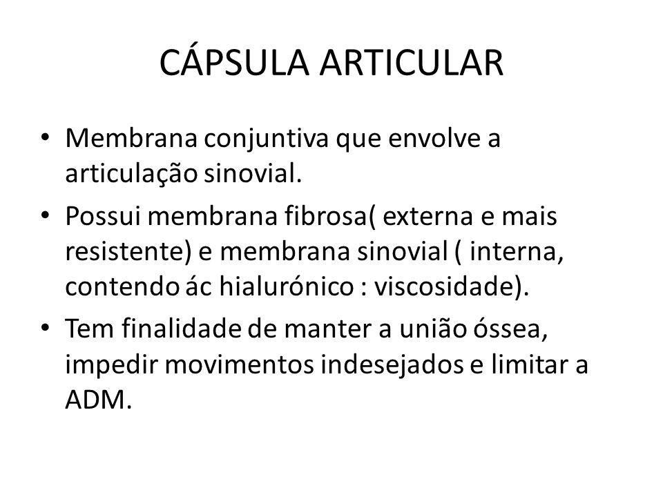 CÁPSULA ARTICULAR Membrana conjuntiva que envolve a articulação sinovial. Possui membrana fibrosa( externa e mais resistente) e membrana sinovial ( in