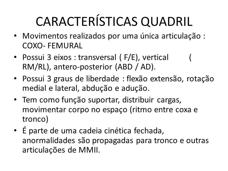 CARACTERÍSTICAS QUADRIL Movimentos realizados por uma única articulação : COXO- FEMURAL Possui 3 eixos : transversal ( F/E), vertical ( RM/RL), antero