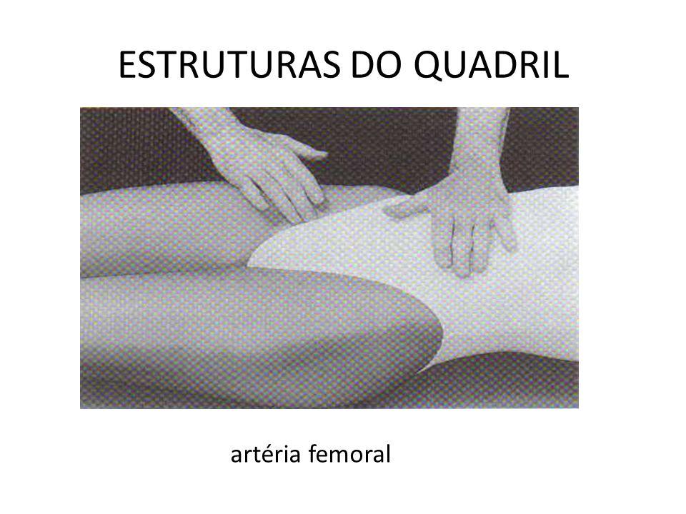 artéria femoral