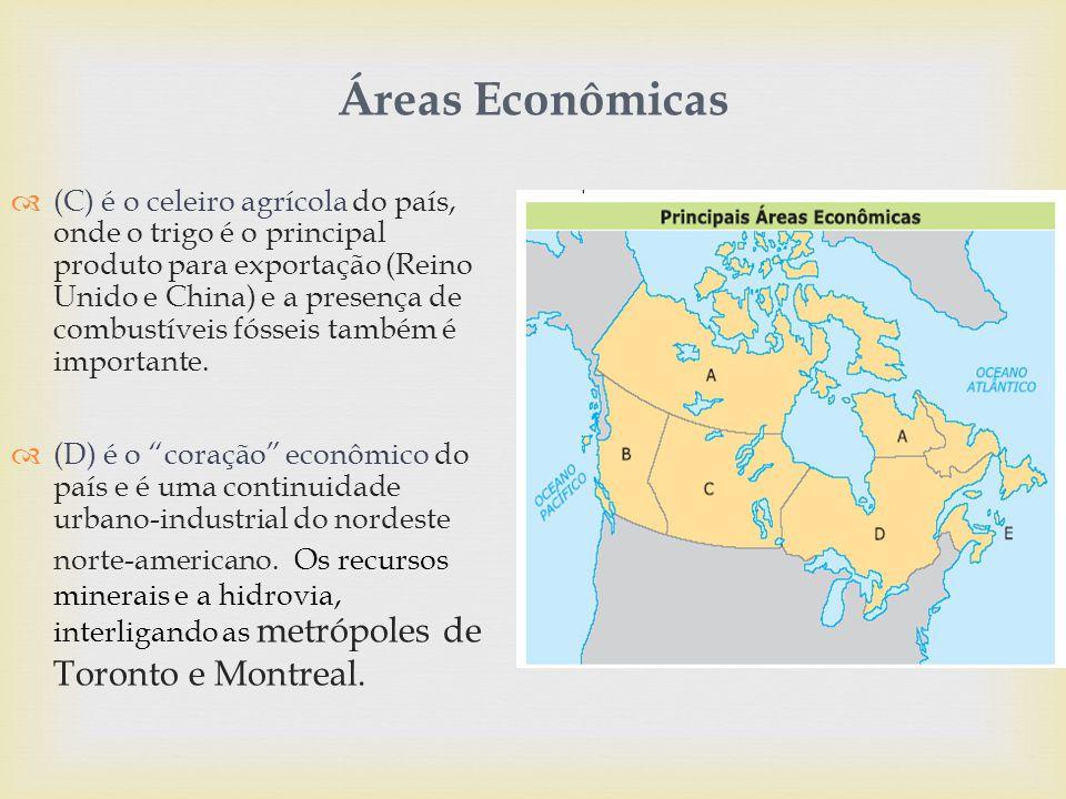 Áreas Econômicas  (C) é o celeiro agrícola do país, onde o trigo é o principal produto para exportação (Reino Unido e China) e a presença de combustíveis fósseis também é importante.