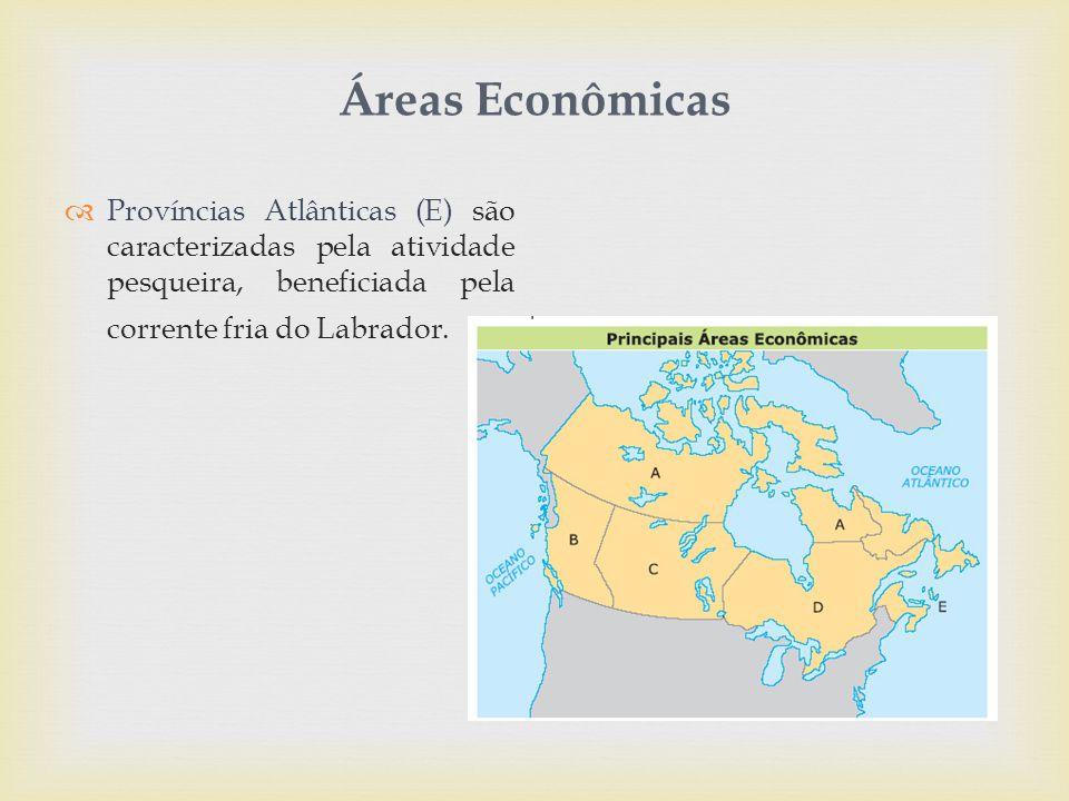 Áreas Econômicas  Províncias Atlânticas (E) são caracterizadas pela atividade pesqueira, beneficiada pela corrente fria do Labrador.
