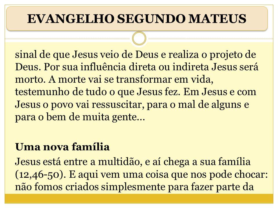 sinal de que Jesus veio de Deus e realiza o projeto de Deus. Por sua influência direta ou indireta Jesus será morto. A morte vai se transformar em vid