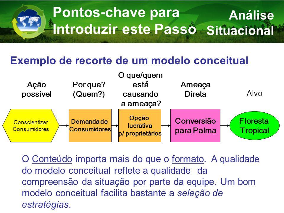 Análise Situacional Pontos-chave para Introduzir este Passo Exemplo de recorte de um modelo conceitual Opção lucrativa p/ proprietários Floresta Tropical Conversião para Palma Ameaça Direta O que/quem está causando a ameaça.
