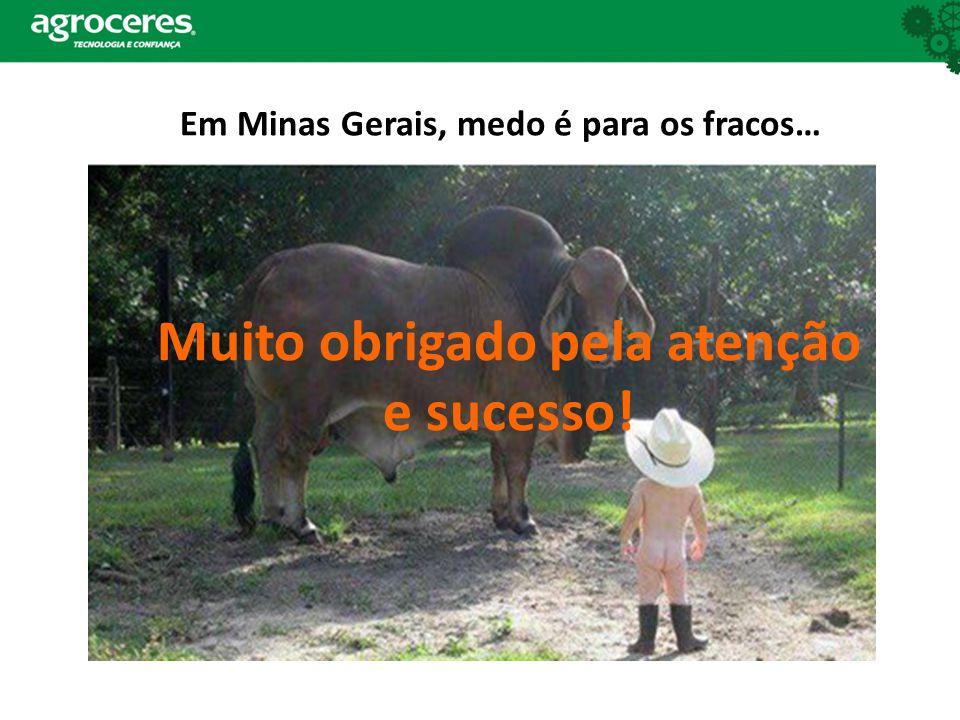 Em Minas Gerais, medo é para os fracos… Muito obrigado pela atenção e sucesso!