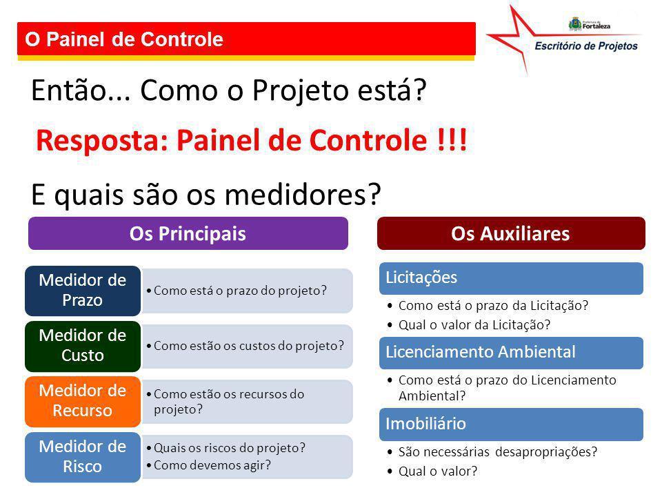 O Painel de Controle Então... Como o Projeto está? Resposta: Painel de Controle !!! E quais são os medidores? Como está o prazo do projeto? Medidor de