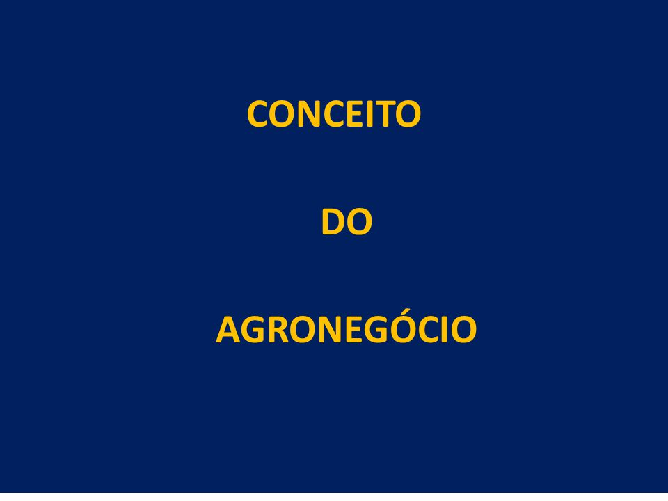 19 CONCEITO DO AGRONEGÓCIO