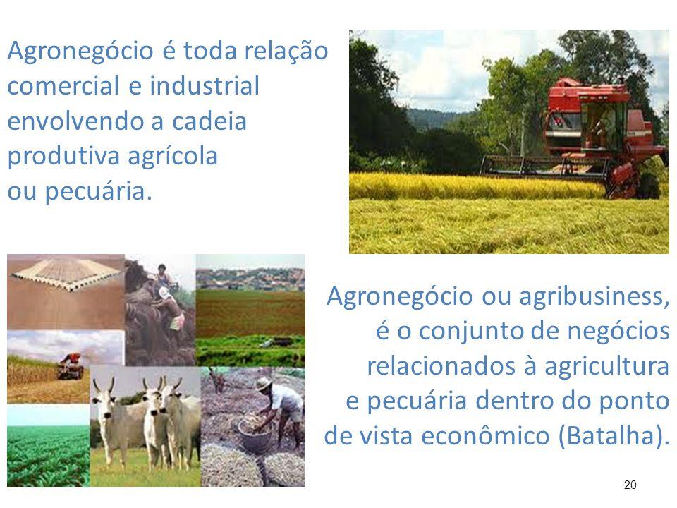 20 Agronegócio é toda relação comercial e industrial envolvendo a cadeia produtiva agrícola ou pecuária. Agronegócio ou agribusiness, é o conjunto de