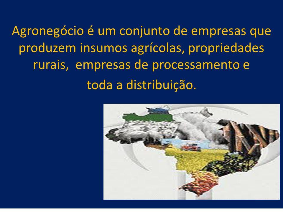 21 Agronegócio é um conjunto de empresas que produzem insumos agrícolas, propriedades rurais, empresas de processamento e toda a distribuição.