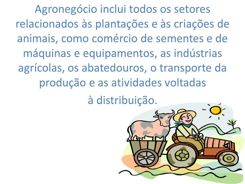 22 Agronegócio inclui todos os setores relacionados às plantações e às criações de animais, como comércio de sementes e de máquinas e equipamentos, as