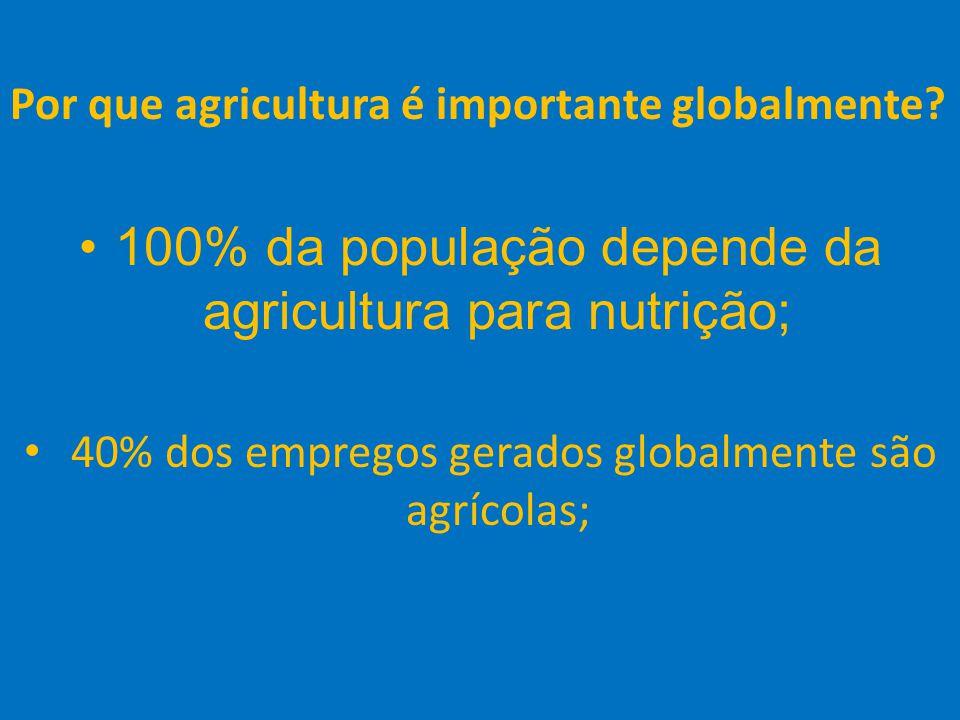 23 Por que agricultura é importante globalmente? 100% da população depende da agricultura para nutrição; 40% dos empregos gerados globalmente são agrí