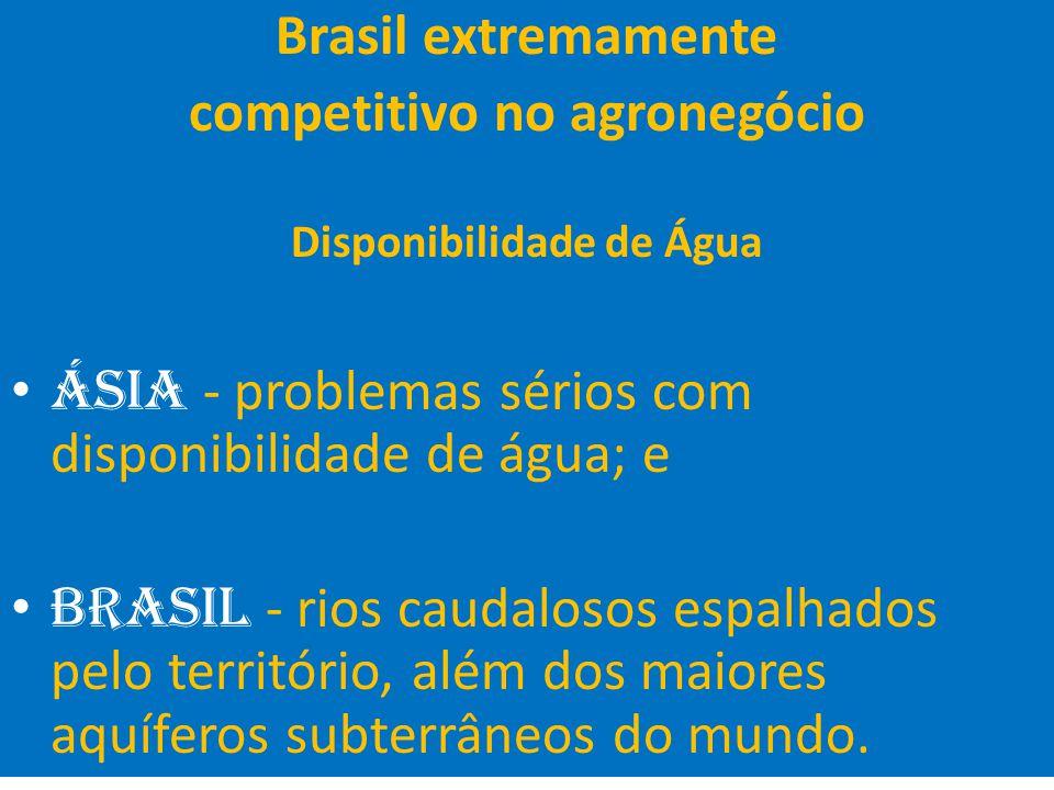27 Brasil extremamente competitivo no agronegócio Disponibilidade de Água Ásia - problemas sérios com disponibilidade de água; e Brasil - rios caudalo