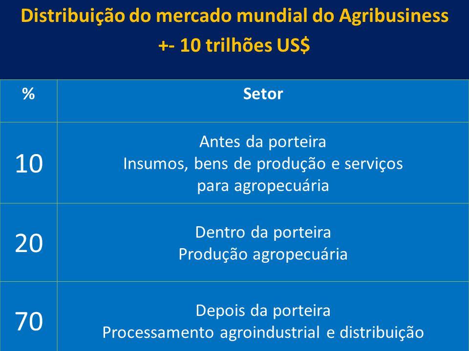 30 Distribuição do mercado mundial do Agribusiness +- 10 trilhões US$ %Setor 10 Antes da porteira Insumos, bens de produção e serviços para agropecuár