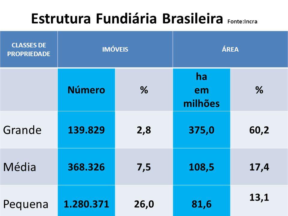 Estrutura Fundiária Brasileira Fonte:Incra CLASSES DE PROPRIEDADE IMÓVEISÁREA Número% ha em milhões % Grande 139.8292,8375,060,2 Média 368.3267,5108,5