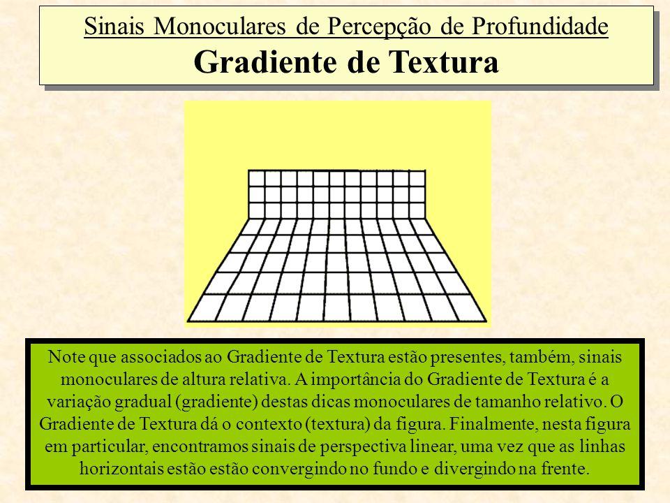 Note que associados ao Gradiente de Textura estão presentes, também, sinais monoculares de altura relativa. A importância do Gradiente de Textura é a