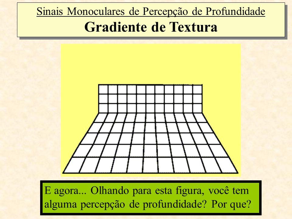 Sinais Monoculares de Percepção de Profundidade Gradiente de Textura Olhando para esta figura, você tem alguma percepção de profundidade? E agora... O